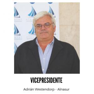 Vicepresidente-300x300